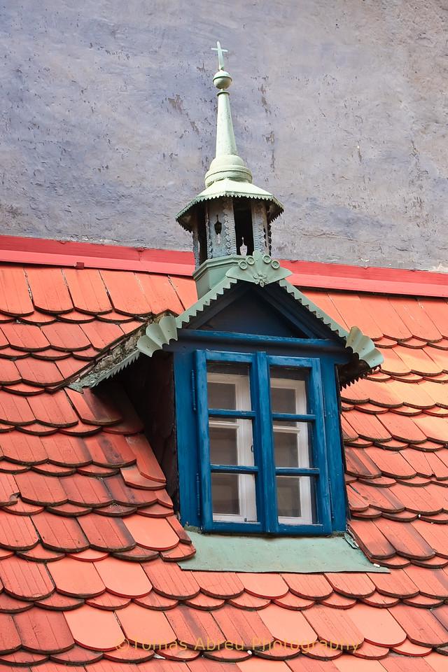 Roof Detail, Prgaue
