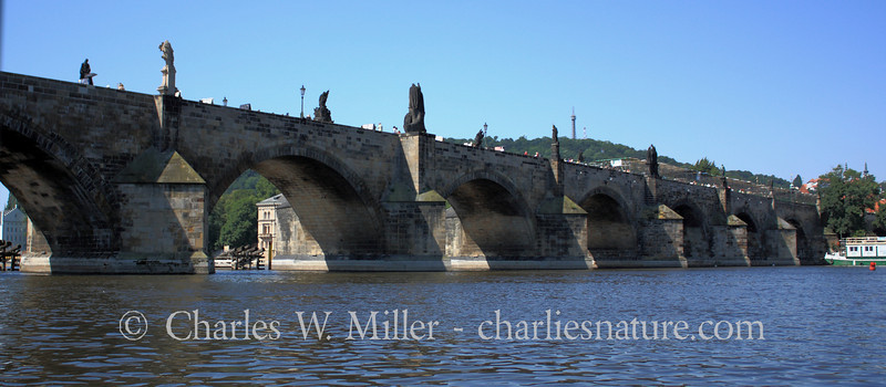 The Charles Bridge from the Vitava River