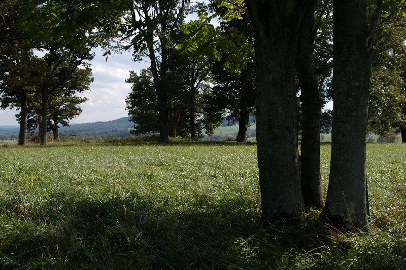 Paris, VA: Mountain meadow
