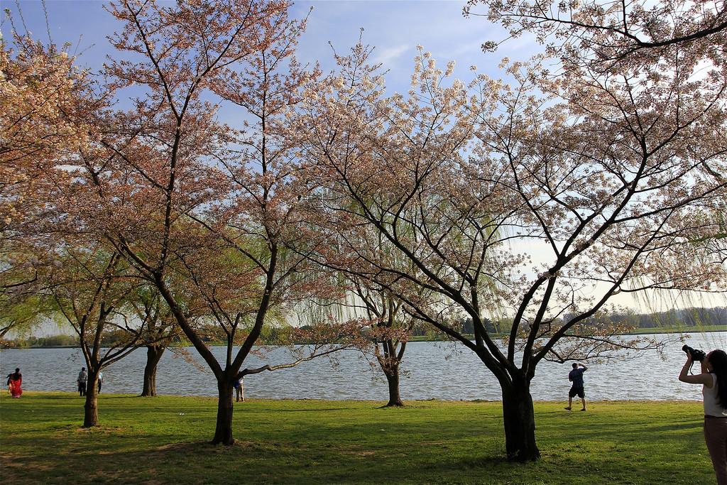 Strolling along the Potomac River...