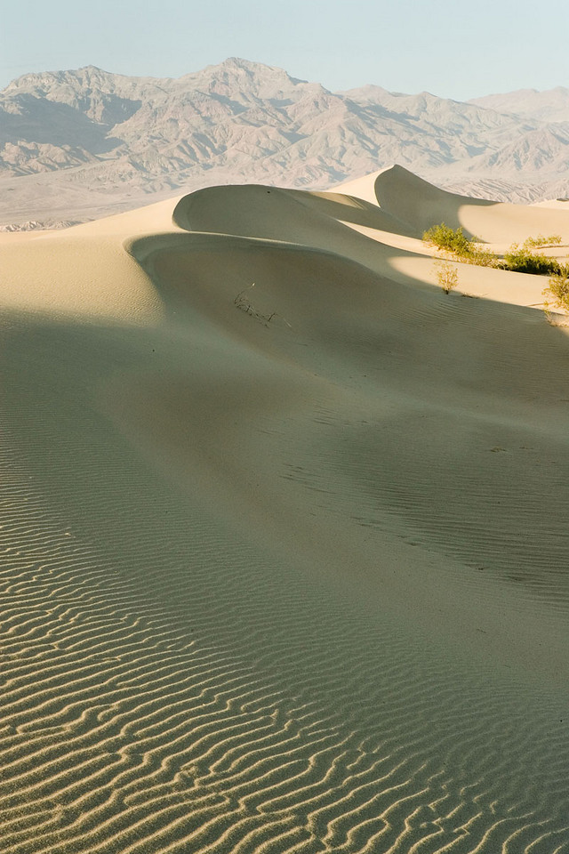 LATE AFTERNOON LIGHT ON THE DUNES AT STOVEPIPE WELLS