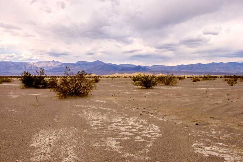 APPROACH TO MESQUITE DUNES AT STOVEPIPE WELLS