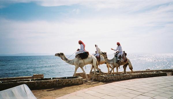 Dahab, Egypt - February 1999