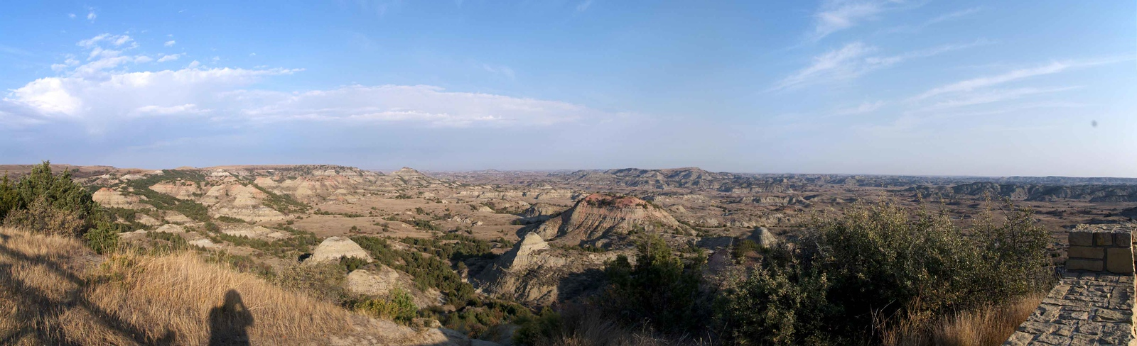 T Roosevelt Badlands