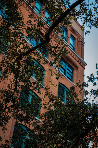 The Window remains open where Lee Harvey Oswald was positioned