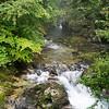 Green Vintgar: At Vintgar Gorge