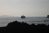 Cavalier Travels Dalmatian Coast Trip 9 08 233