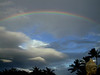 Big Island, HI - Rainbow over palm trees at Hilton Village