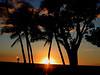 Big Island, HI - sunset at the Hilton Village