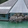 Red Bull headquarters in Fuschi, Austria.