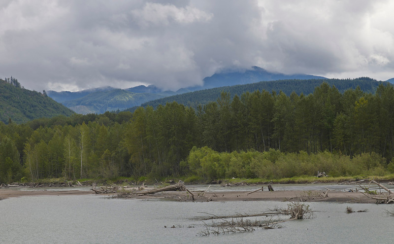 Fallen tree and mountain lake