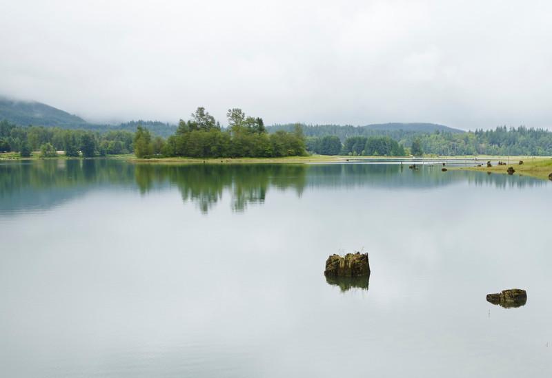 Lake and tree stump
