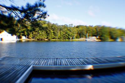 The Swimming Dock, Makalika Cottage, Milford Bay