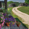 Flowers and street scene; Bakersville - a seed store and fantasy town near Mansfield, Missouri.