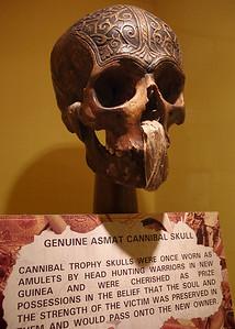 Cannibal skull, New Guinea. Ripley's Believe It Or Not Museum, Branson, Missouri.