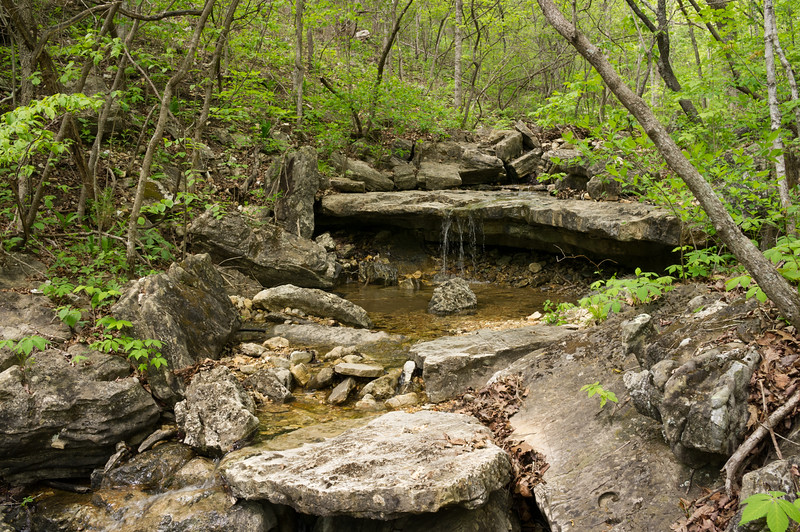 This woodland stream is a tributary of Bryant Creek; Cedar Gap Conservation Area near Mansfield, Missouri.