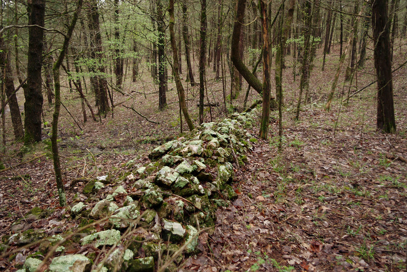 Old stone wall in the woods. Homesteaders Trail, Henning Conservation Area, near Branson, Missouri.
