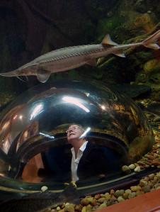 Rita gets a close look at a sturgeon. Neosho National Fish Hatchery.