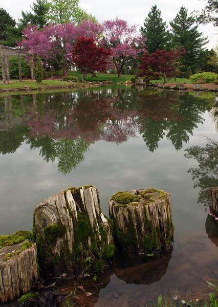 View of the lake - Mizumoto Japanese Stroll Garden, Springfield, Missouri.