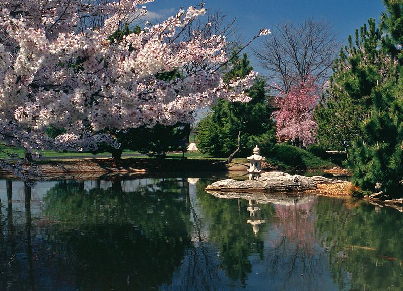Mizumoto Japanese Stroll Garden, Springfield, MO. 2004