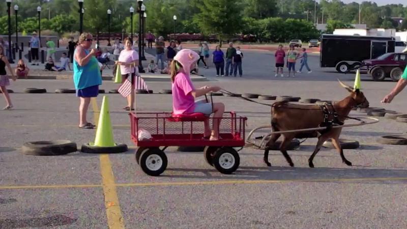 Goat Race video, Old Time Music Ozark Heritage Festival, West Plains, Missouri