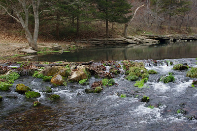 Roaring River Spring branch, Roaring River State Park, near Cassville, Missouri.