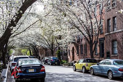 TriBeCa_AboutAlex_NYCFB-3064