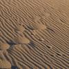 Le dune la sera