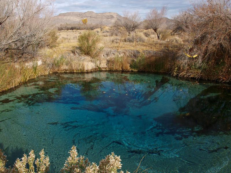 Spring Pools, ad Amargosa Valley