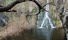 Darwin Falls--a true desert oasis