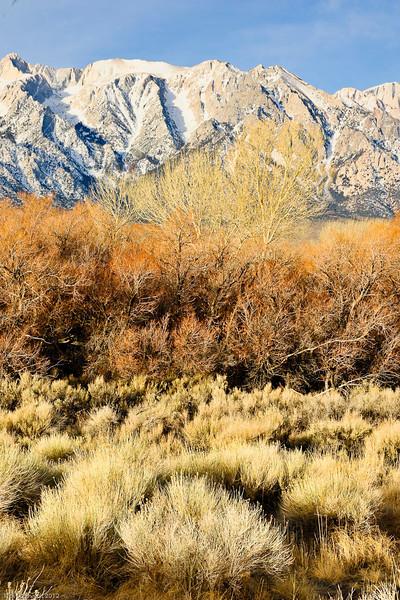 Death Valley 2012_RASchmiedt-118