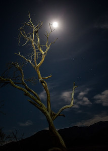 Full moon at Mesquite Sand Dunes