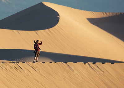 Nestor at Mesquite Dunes