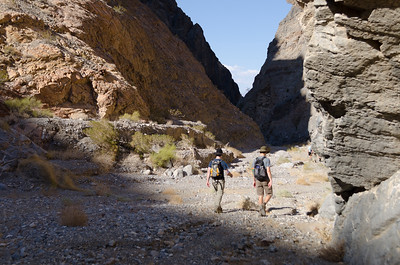 Death Valley Bachelors