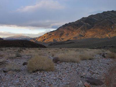 Death Valley Daze  2005
