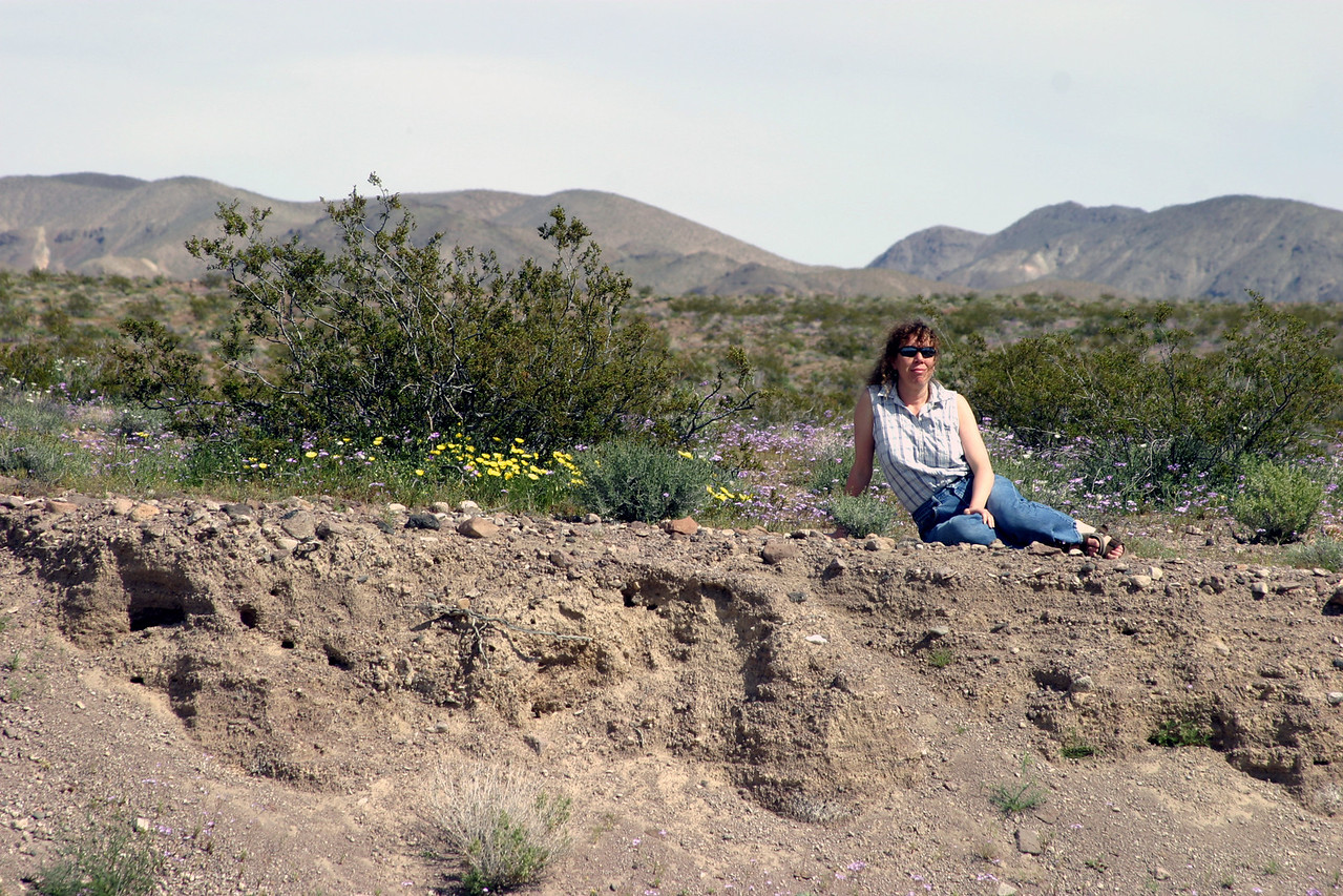 "<font size=""+1"">More of my lovely sister sitting in a plethora of blooms in the dessert. </font>"