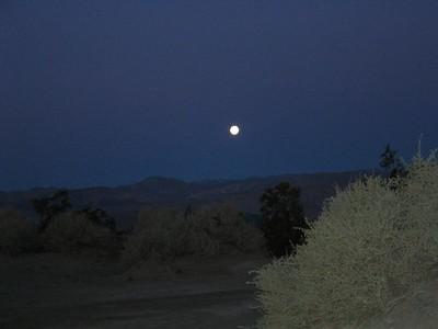 Death Valley March 2005