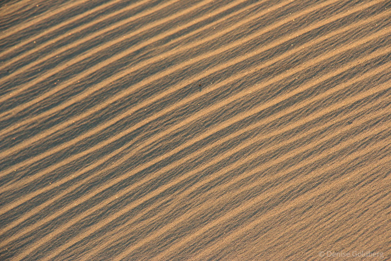 sunlit patterns in the sand