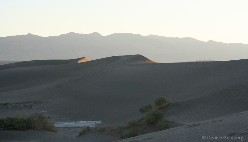 early morning in the sand dunes