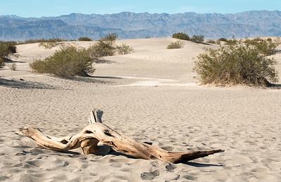 2017-01-15  Mesquite Flat Sand Dunes