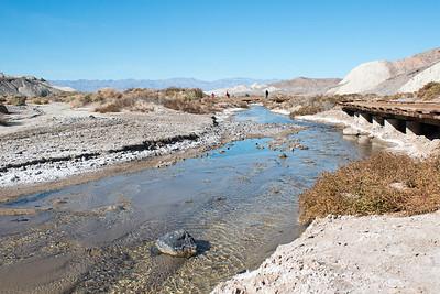 2017-01-15  Salt Creek Interpretive Trail