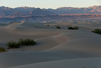 Evening over the Sand Dunes, Death Valley California