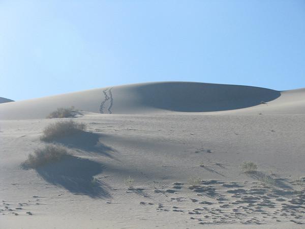 Death Valley- conclusion