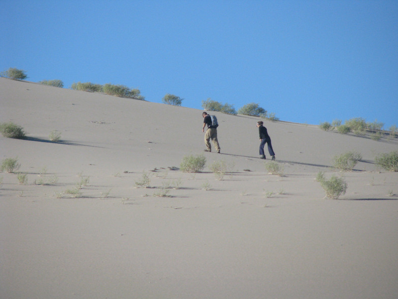 They took the morning invite to climb the dune.