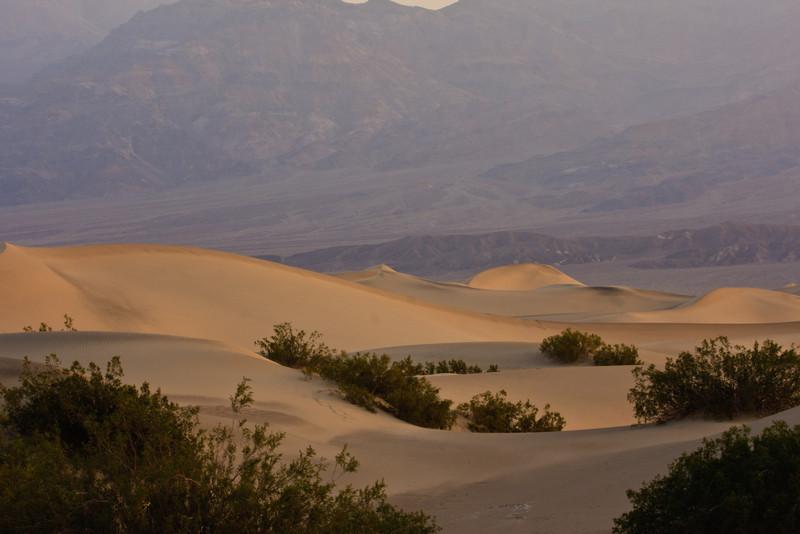 Sunrise at the dunes.