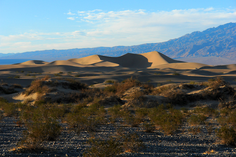 The sand dunes as seen from the road