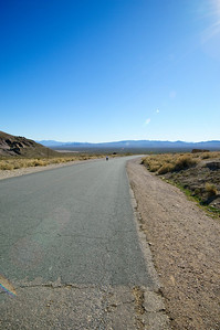 View of Suzi taking a stroll from Rhyolite... not sure where she's headed.