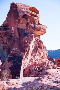 the Husky -Valley of Fire- Nevada