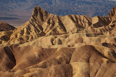 Zabriskie Point just after dawn. Virtually no vegetation grows in this area.