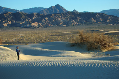 Dunes at sunrise just outside of Stovepipe Wells. Went from heavy coats to tee shirts in 30 minutes.